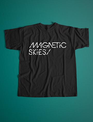 Magnetic Skies